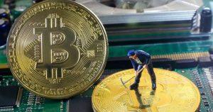 Криптовалюта законно как предугадать рост или падение криптовалюты